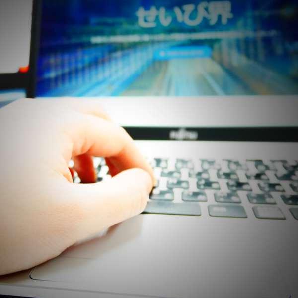 せいび界web